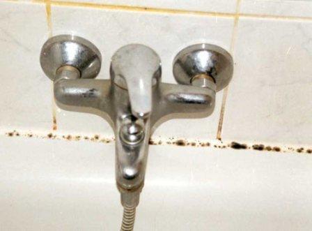 избавиться от плесени в ванной