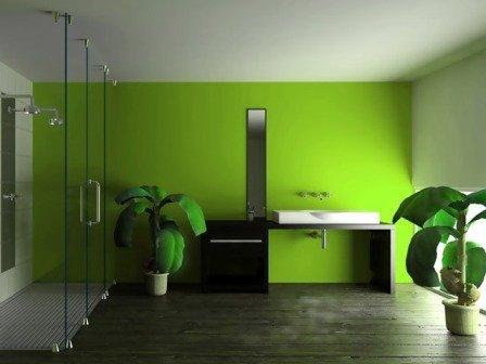 Образец ванной комнаты с окрашенными стенами